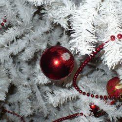 L'Arbre de Noël 2011 et de Jolis Cadeaux !